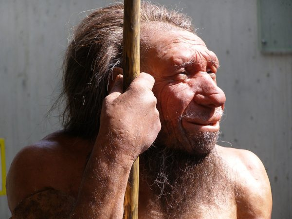 23andme Neanderthal DNA report