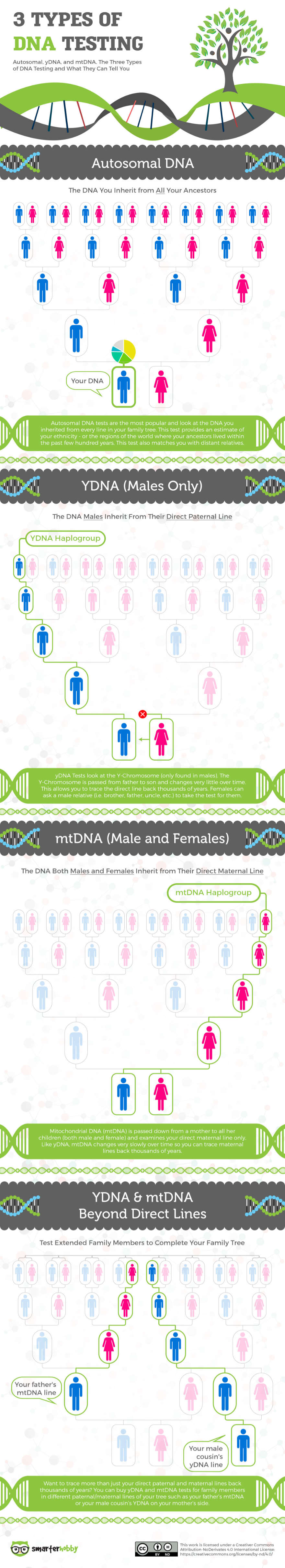 most accurate dna test for ancestry